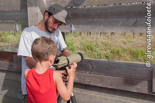 Diaccia Botrona - birdwatching